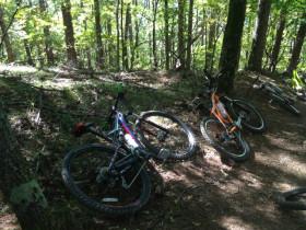 自転車IMG_6386